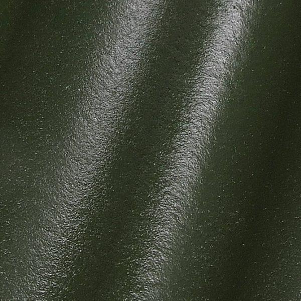 modoplius zalia